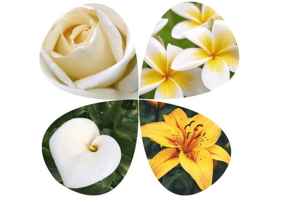 Какие цветы  использовать  для связи с ангелами