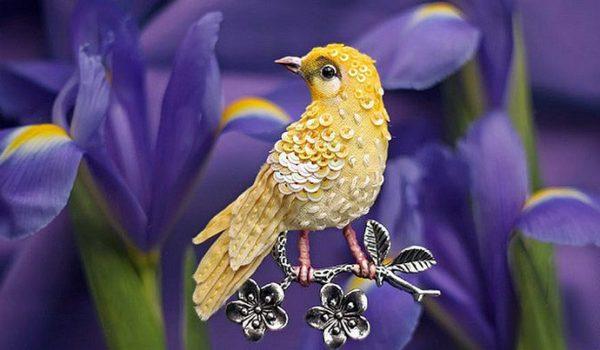Какие знаки нам дают птицы