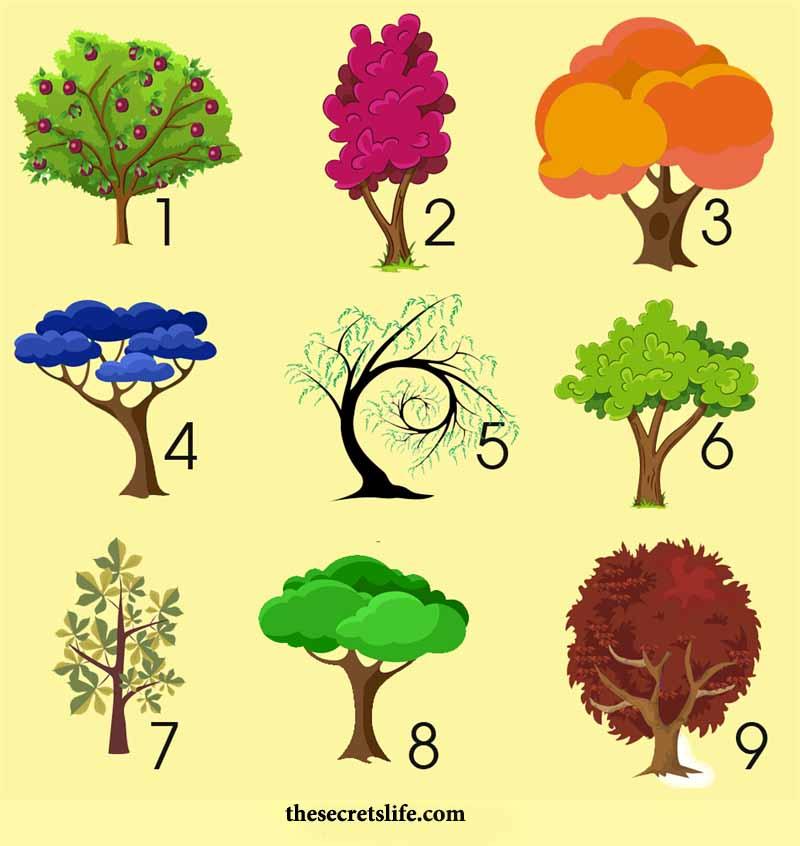 поражения тесты в картинках деревья практически никогда афишировал