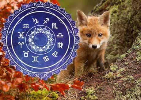 Астрологический гороскоп на Ноябрь 2018